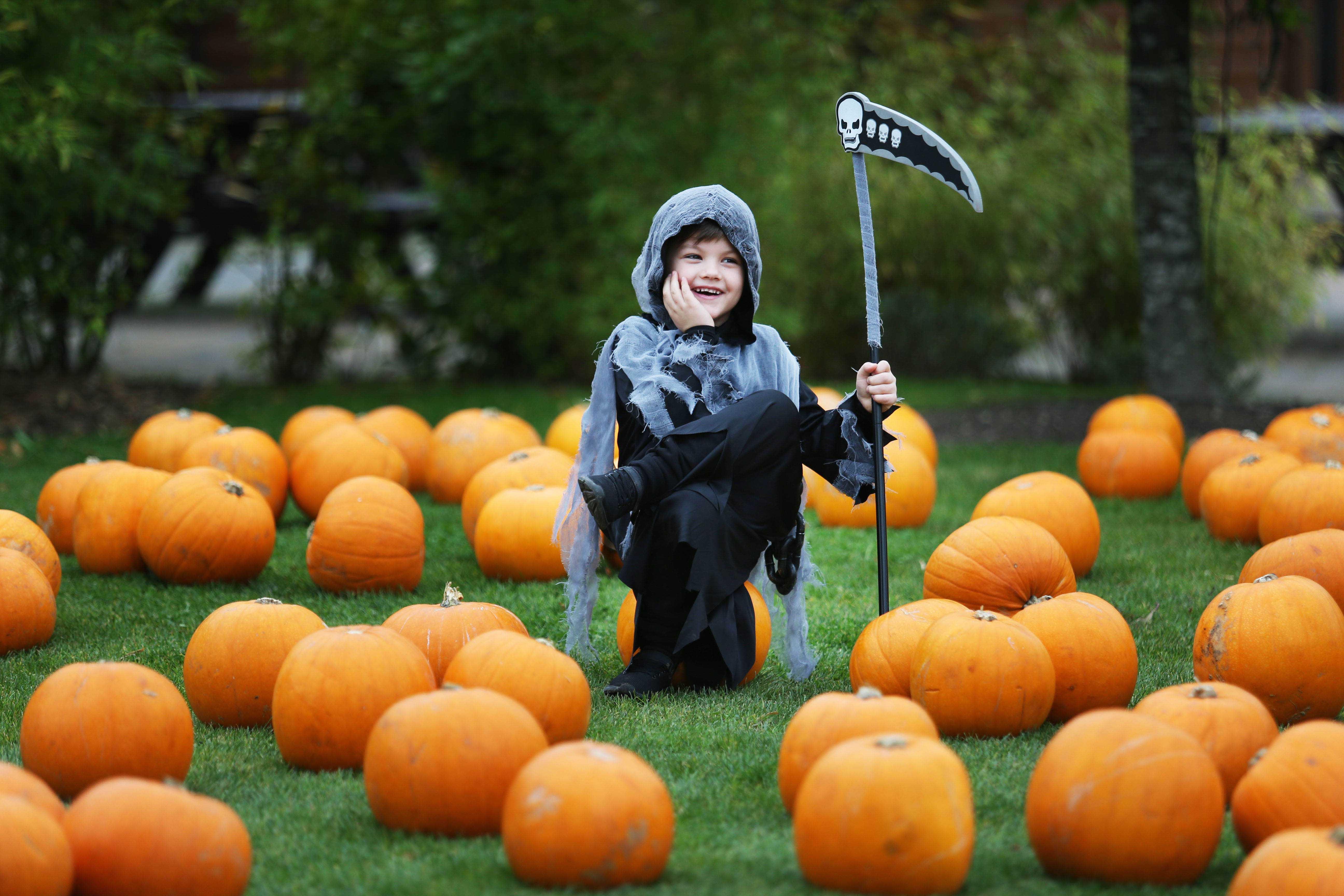 Tayto Park Halloween Ghost Hunters